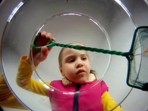vídeos de stock, filmes e b-roll de menina capturas 2 goldfishes - pet equipment