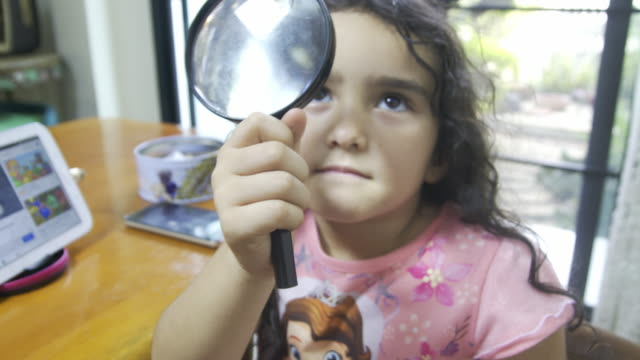 vídeos de stock e filmes b-roll de little girl child exploring with a magnifying glass looking for insects in flower.eduction - lupa