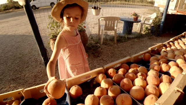 little girl choosing fruit at farmers market - greengrocer's shop stock videos & royalty-free footage