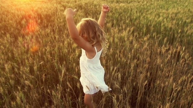 Little girl dances in a wheat field.