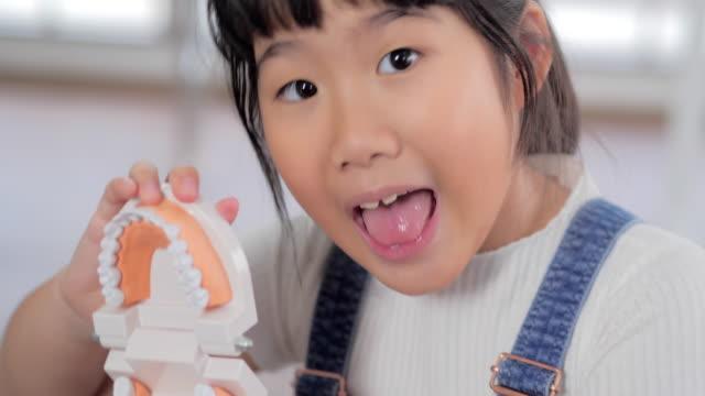 vídeos de stock, filmes e b-roll de dentista de pequena garota segurando modelo de dente. menina sorridente de aprendizagem. tópicos de educação - sabedoria
