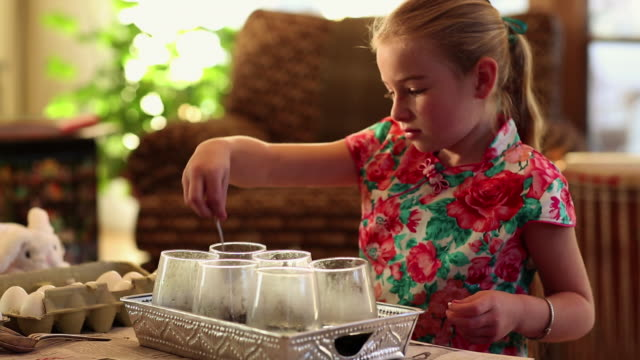 ms little girl dyeing easter eggs / lamy, new mexico, united states - lamy new mexico stock videos and b-roll footage