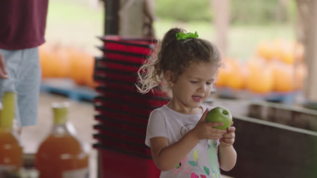 a little girl eats an apple while her father pulls a pumpkin in a wagon at a pumpkin patch - apple fruit stock videos & royalty-free footage