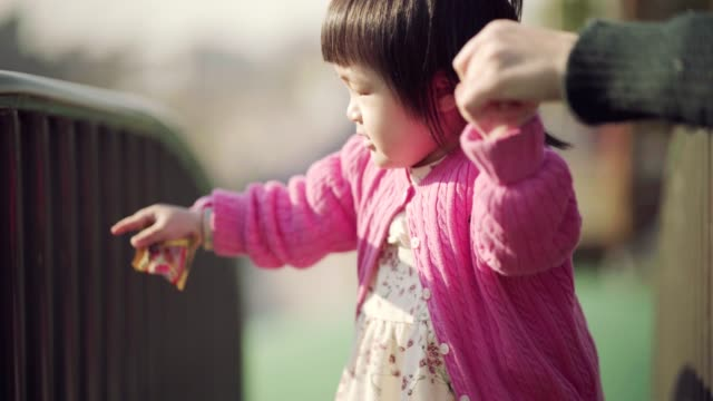 little girl having fun at playground - korean ethnicity stock videos & royalty-free footage