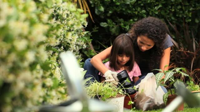 vidéos et rushes de little girl helping mother with gardening / cape town, western cape, south africa - gant de jardinage