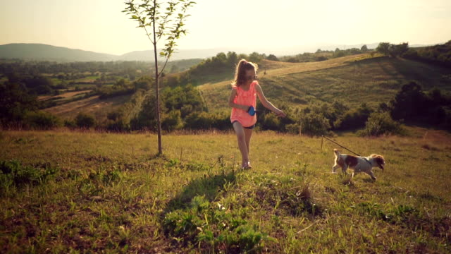 little girl in a walk with puppy - solo bambini video stock e b–roll
