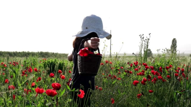 Little girl in big hat on a field of blooming red poppies