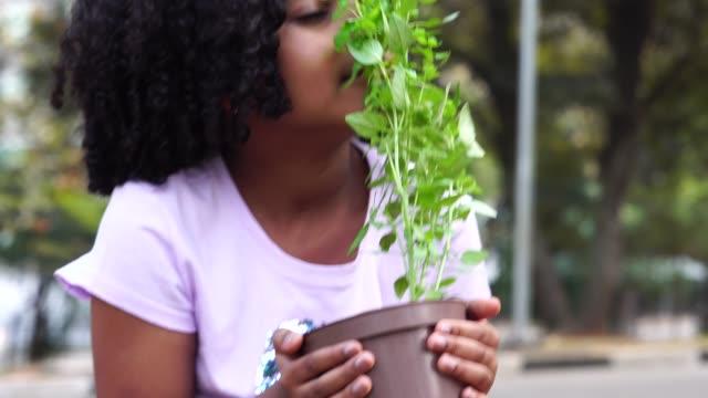 little girl in garden, smelling fresh plant - community garden stock videos & royalty-free footage
