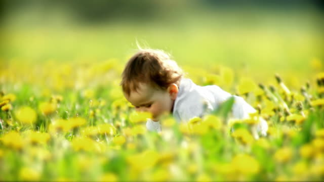 hd: little girl in nature - one baby girl only stock videos & royalty-free footage