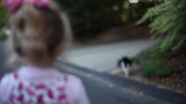 Little girl in watermelon dress watches cat run across the street