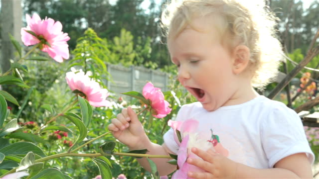little girl is sniffing a flower. - springtime stock videos & royalty-free footage