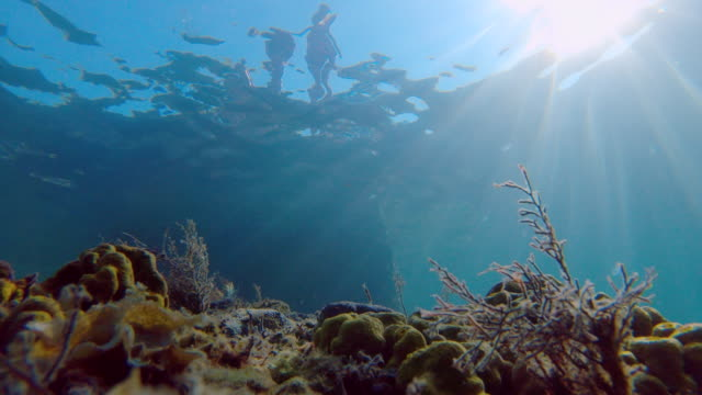 little girl jumping into the sea from low angle view - undersea stock videos & royalty-free footage