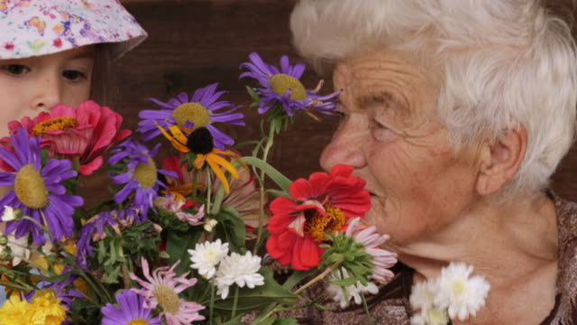 cu pan little girl learns from her grandmother how to arrange flowers in a vase. real people, rural scene. - bouquet stock videos and b-roll footage
