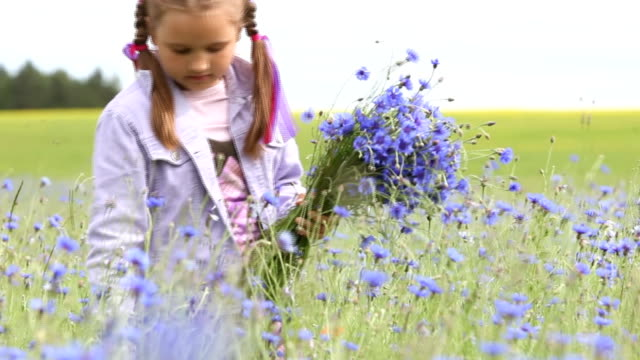 little girl picking flowers - petite teen girl stock videos and b-roll footage