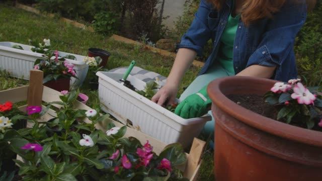 vidéos et rushes de petite fille jouant tandis que sa mère est en pot des fleurs - gant de jardinage