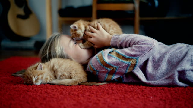 little girl playing with kittens indoors - appartamento video stock e b–roll