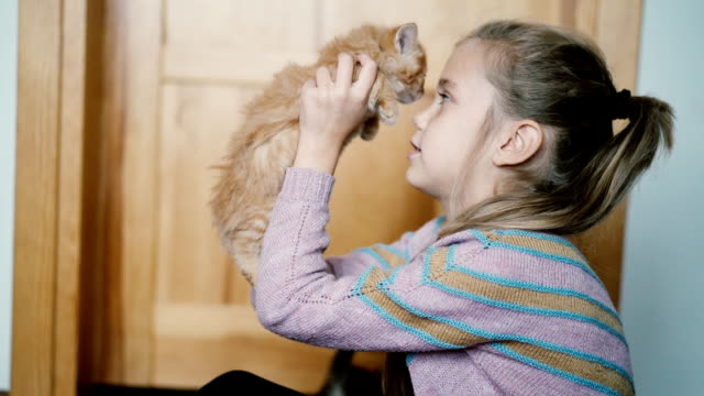 Little girl playing with kittens indoors