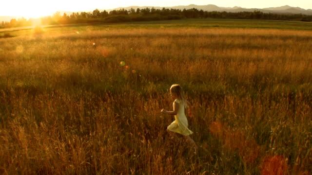 vidéos et rushes de vue aérienne de petite fille course dans les meadow - cheveux blonds
