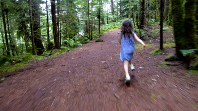 vídeos de stock e filmes b-roll de little girl running through a lush green forest - 4 5 anos