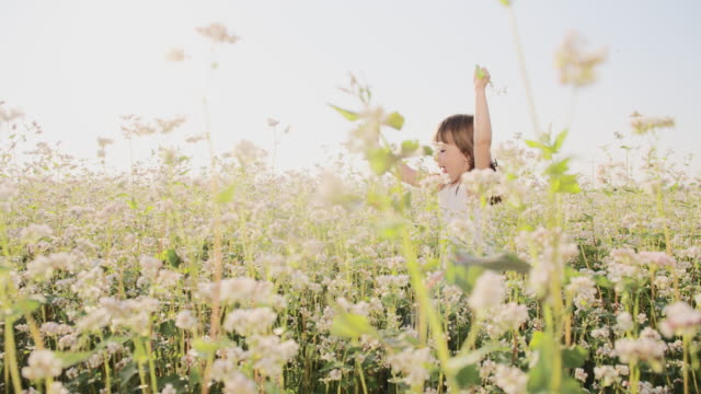 SLO MO Little girl running through buckwheat field