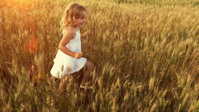 little girl runs through wheat field joyfully - dress stock videos & royalty-free footage