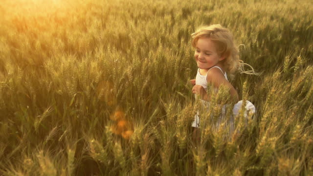 little girl runs through wheat - blonde hair stock videos & royalty-free footage