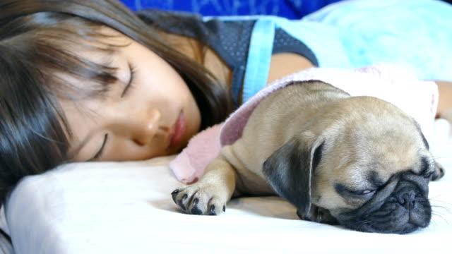 子女の子が犬と黒いパグの子犬とベッドの上で眠っている - ペット点の映像素材/bロール
