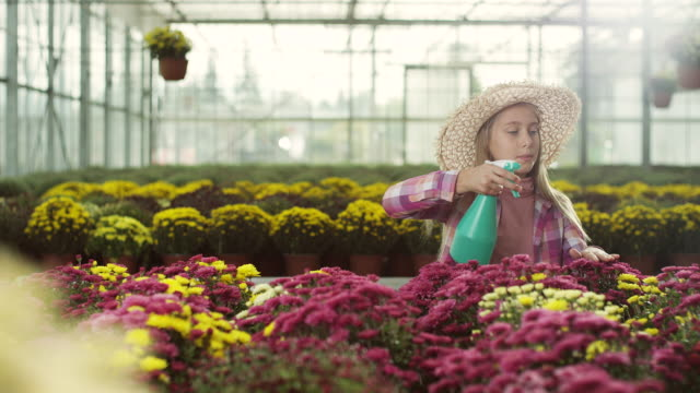 vídeos de stock, filmes e b-roll de pequenas flores de pulverização de menina - canteiro de flores