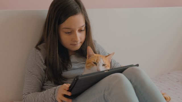 little girl surfing the internet with her cat - one girl only stock videos & royalty-free footage