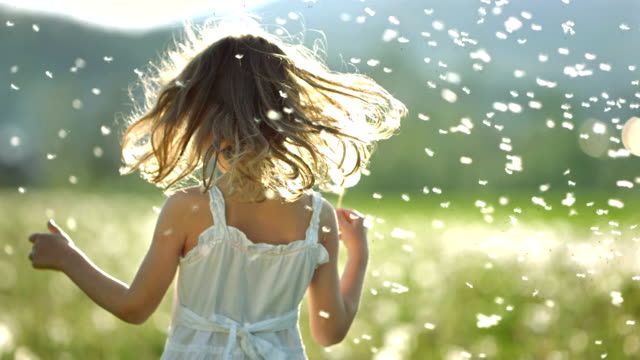 stockvideo's en b-roll-footage met super slo-mo little girl surrounded with dandelions - blij