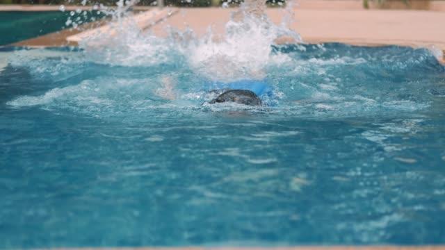 vídeos de stock, filmes e b-roll de menina nadando na piscina - lago infinito