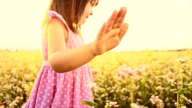 SLO MO Little girl walking in the buckwheat field