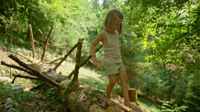 slo mo little girl walking on a trunk of a fallen tree in the sunny forest - children only stock videos & royalty-free footage