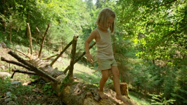 vídeos de stock e filmes b-roll de slo mo little girl walking on a trunk of a fallen tree in the sunny forest - children only