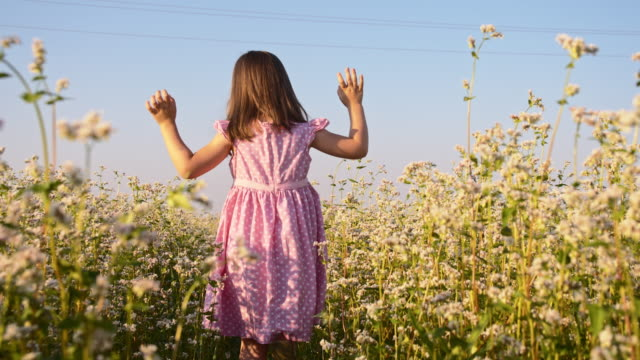 SLO MO Little girl walking through buckwheat field