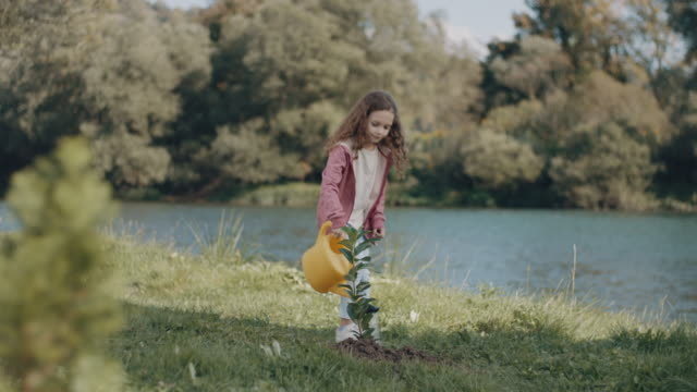 little girl watering a plant - watering can stock videos & royalty-free footage
