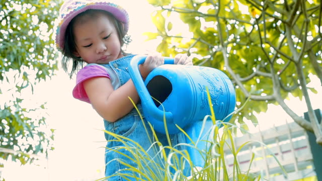 Little girl watering plant in garden \\ Concept : taking care of nature