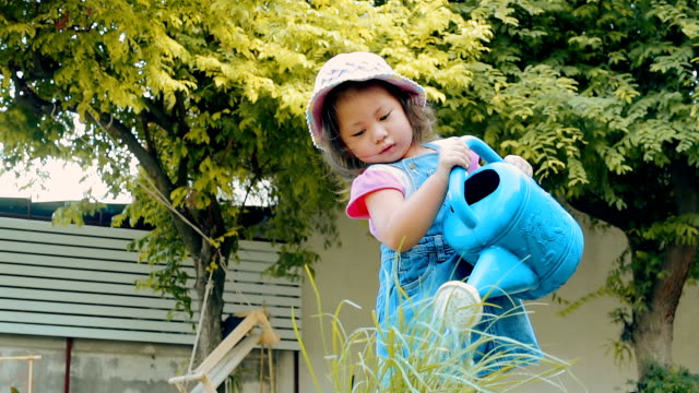little girl watering plant in garden \\ concept : taking care of nature - watering can stock videos and b-roll footage