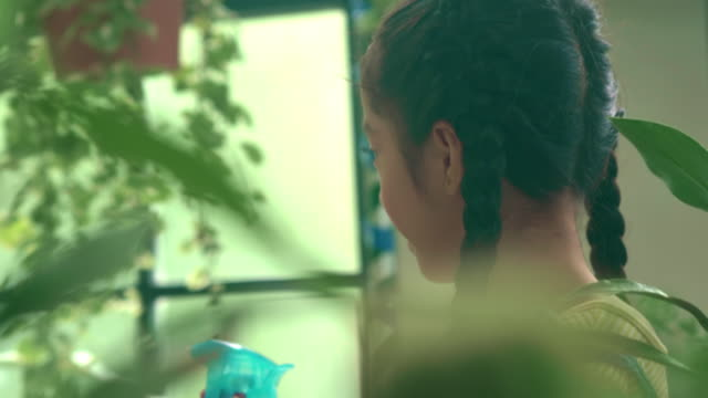 vidéos et rushes de petite fille arrosant la plante - plante