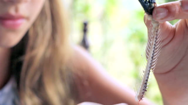 little girl who is holding a fish spine and touches the thorns - bristle animal part stock videos and b-roll footage