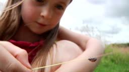 Little girl with ladybird