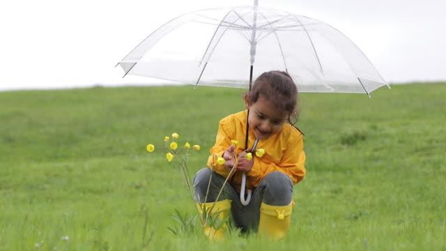 vídeos de stock e filmes b-roll de little girls are picking flowers under rain - chapéu