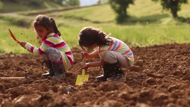 kleine mädchen graben den boden - kinderspielplatz stock-videos und b-roll-filmmaterial
