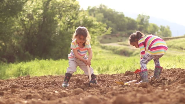 little girls dig the soil - digging stock videos & royalty-free footage