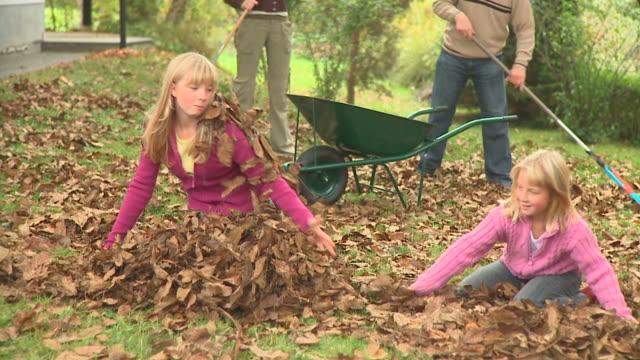 vídeos de stock e filmes b-roll de carrinho de hd: qmeninas - ancinho equipamento de jardinagem