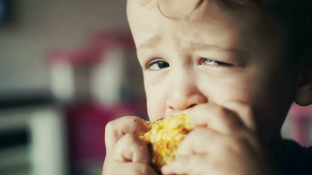 little kids eating corn on the cob - vegetable stock videos & royalty-free footage
