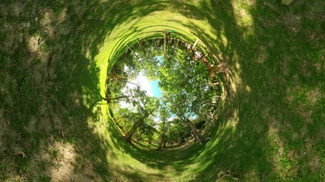 kleiner planet regenwald tropischer wald mit großen bäumen an einem sonnigen tag - 360 grad panorama stock-videos und b-roll-filmmaterial
