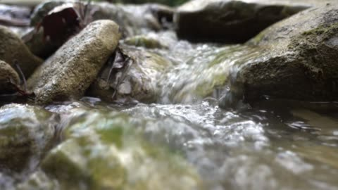 little stream - flowing water stock videos & royalty-free footage