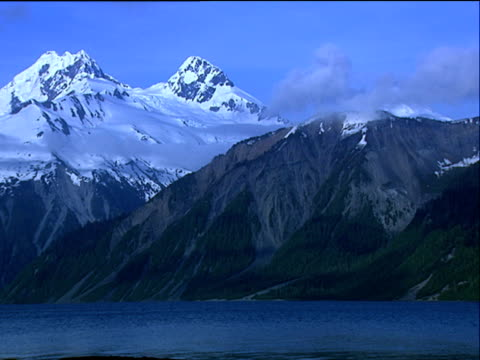 stockvideo's en b-roll-footage met lituya bay's snow covered mountains forest foothills alaska - plant attribute