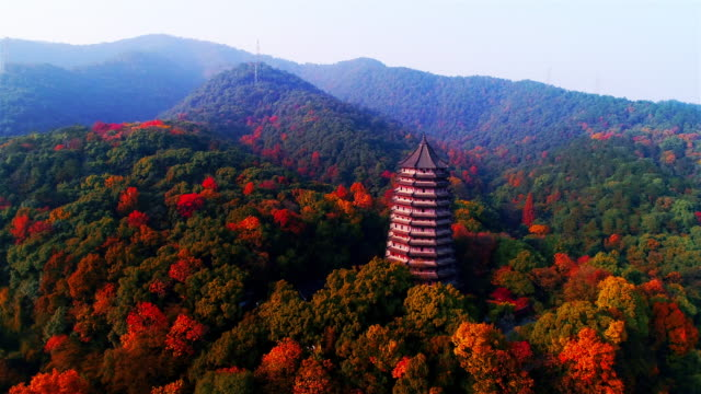 liuhe pagoda in autumn shooted by drone